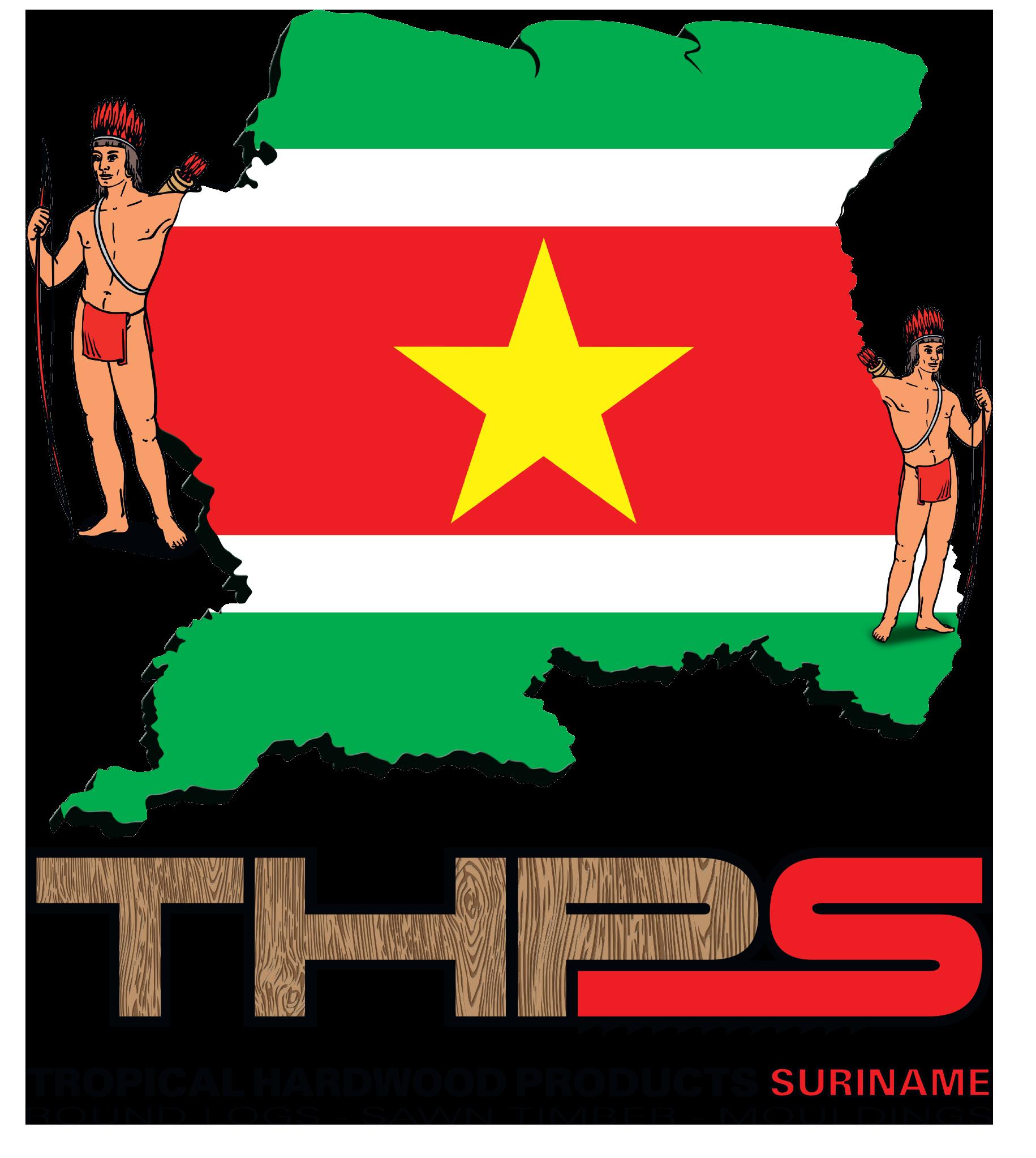 thps_logo_big.png